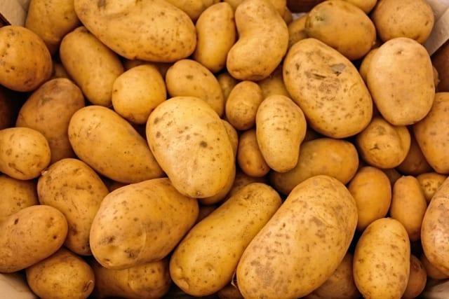 【朗報】ジャガイモ、どんな土地に痩せた土地でも簡単に育つ上にどんな調理法でも美味しい
